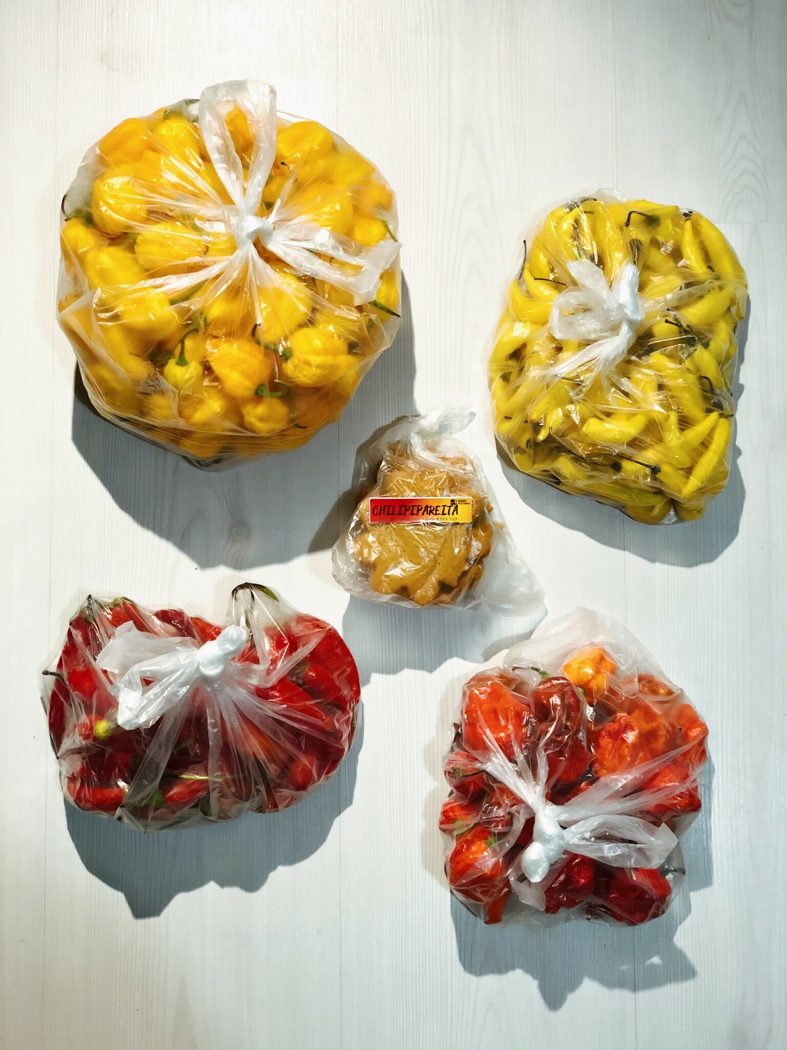 Four bags of chili peppers, left to right top to bottom: Scotch Bonnet, Lemon Drop, Aji Cristal and Carolina Reaper